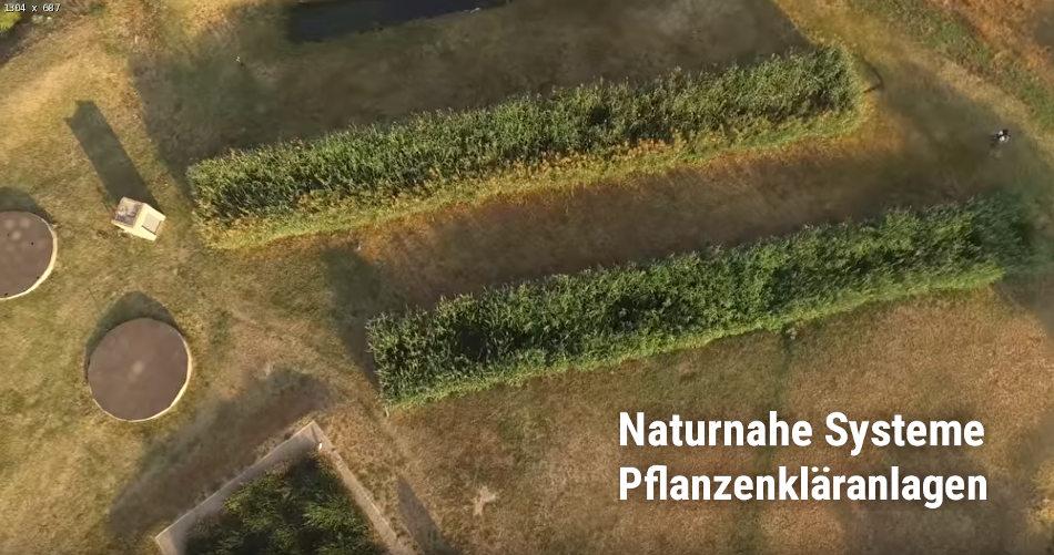 Pflanzenbeete als naturnahe Kleinkläranlage